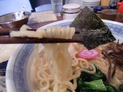 昇家の中太麺のトンコツ魚介系ラーメン